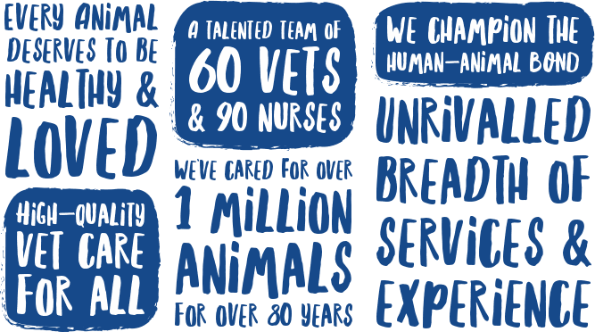 Animal Hospital in Melbourne: animal healthcare and adoption