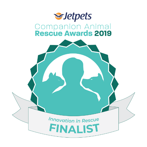 Lort Smith Acknowledged For Innovation In Rescue Award Lort Smith Animal Hospital